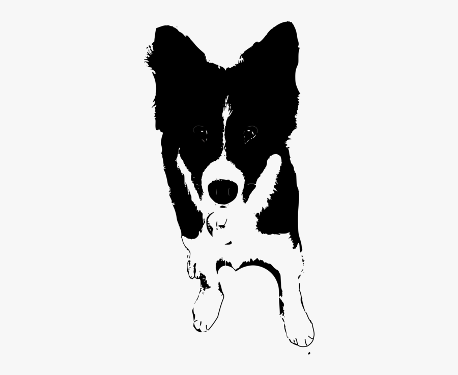 Monochrome Breed - Dogs Clipart Black And White Collie, Transparent Clipart