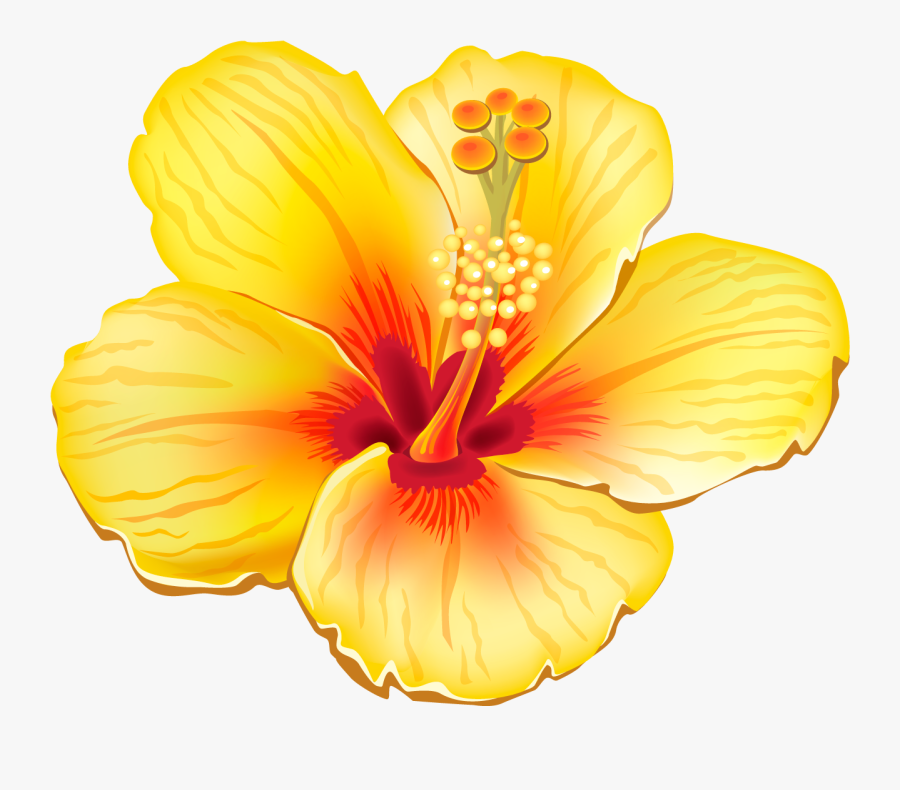 Hawaiian Flowers Clipart Realistic - Yellow Tropical Flower Png, Transparent Clipart