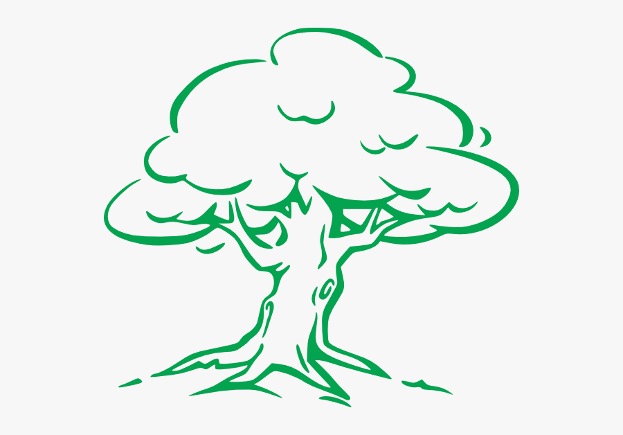 Oak Tree Simple Drawing, Transparent Clipart
