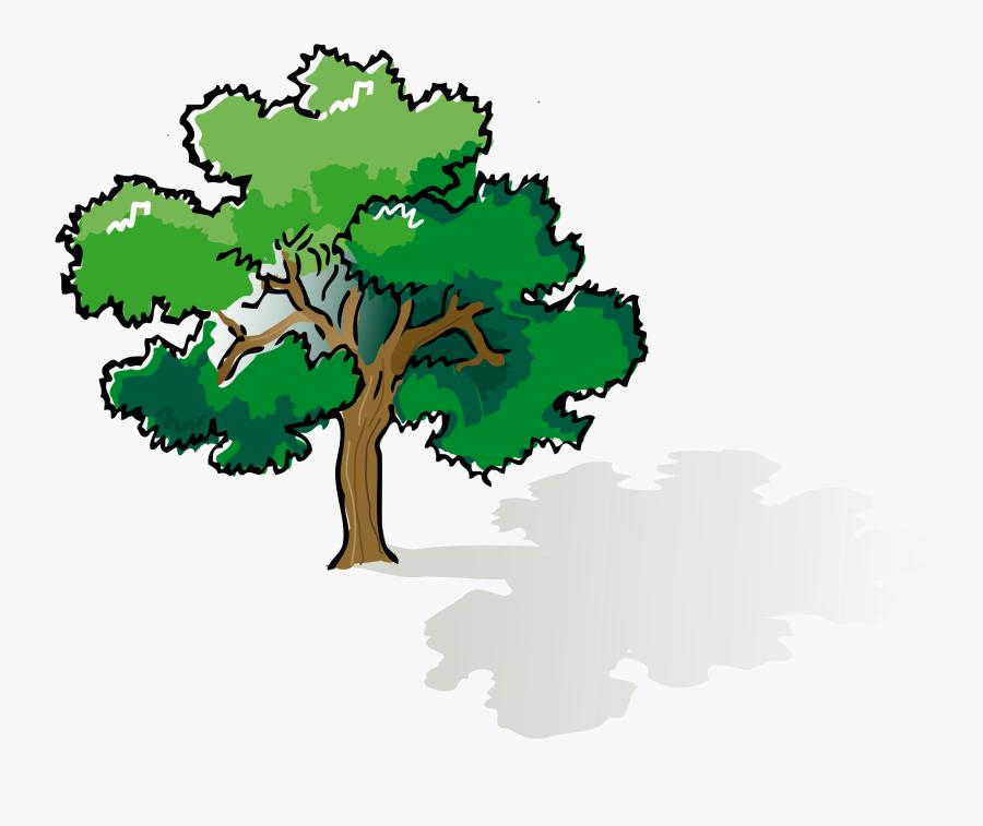 Oak Tree Tree Clip Art Free Clipart Images Clipart - Tree Shade Clipart, Transparent Clipart