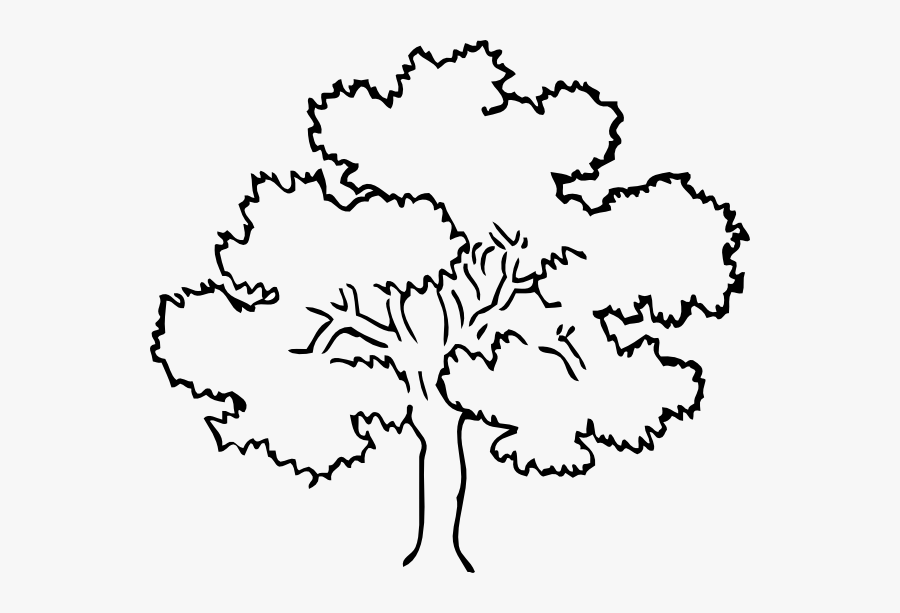 Oak Tree Clip Art At Clker Com Vector Clip Art Online - Forest Tree Coloring Page, Transparent Clipart