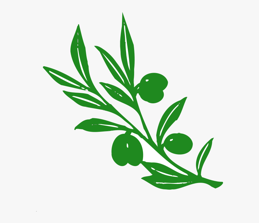 Oak - Tree - Vector - Free - Download - Olive Tree Branch, Transparent Clipart