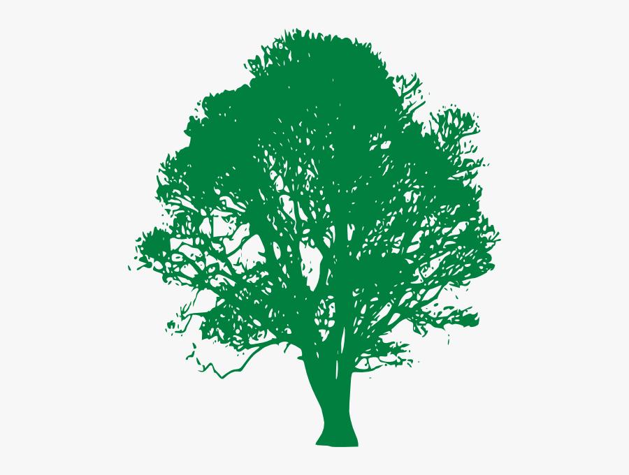 White Oak Tree Clip Art - Transparent Background Oak Tree Clip Art, Transparent Clipart