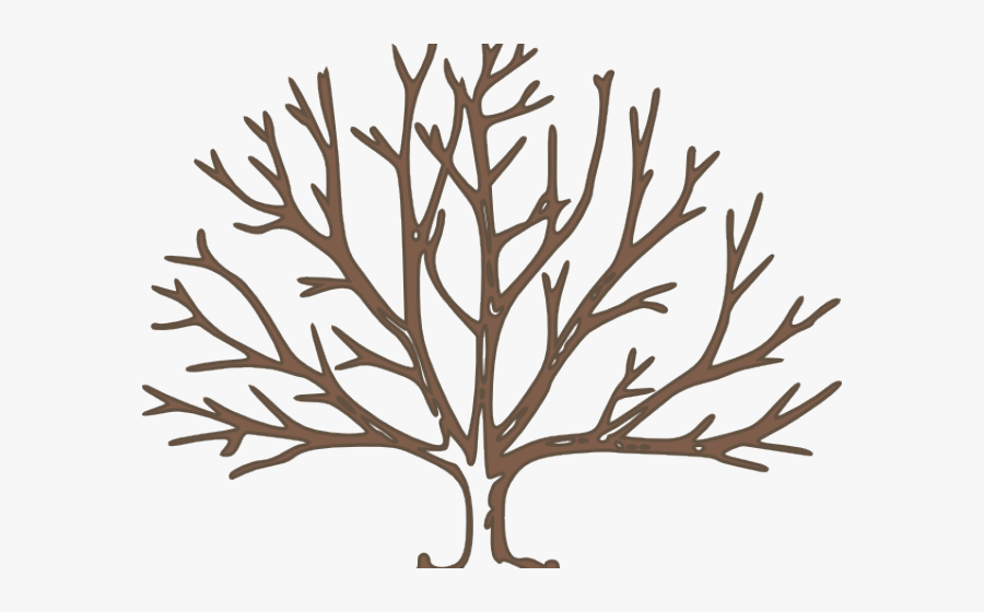 Draw A Winter Tree, Transparent Clipart