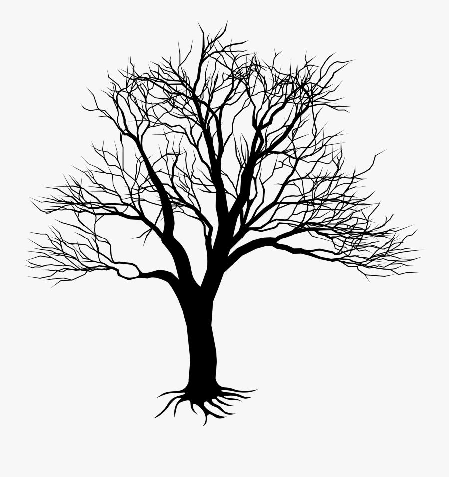Clip Art Oak Tree Drawing - Kill A Mockingbird Tree, Transparent Clipart
