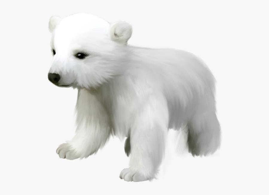 Polar Bear Clip Art Polar Bears And Clipartix - Polar Bear Baby Clip Art, Transparent Clipart