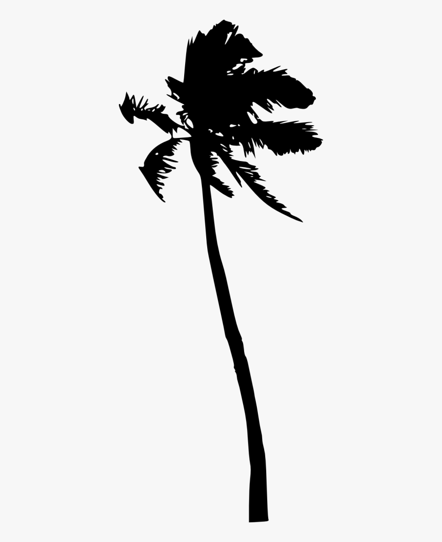 Tree Silhouette Coconut Png, Transparent Clipart