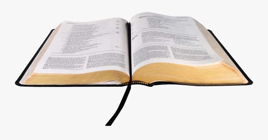 The Ivp Bible Background Commentary Niv, Cultural Backgrounds - Open Bible Transparent Background, Transparent Clipart