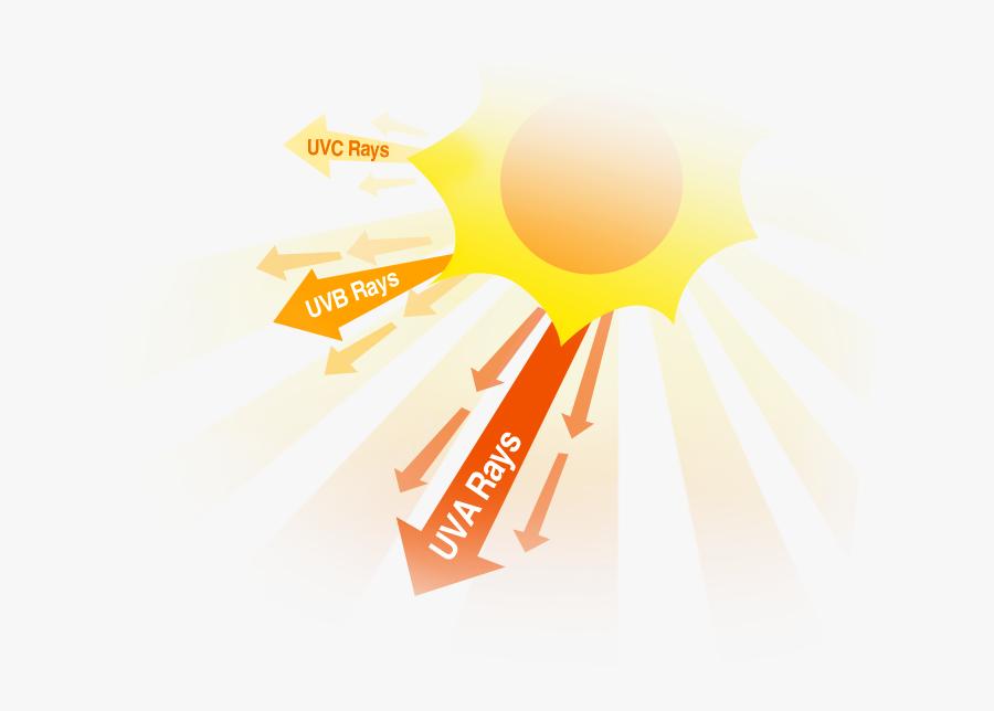 Sun Uv Rays, Transparent Clipart