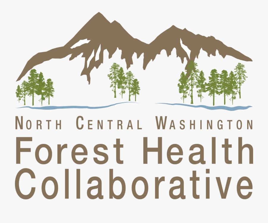 Transparent Grassy Hill Clipart - North Central Washington Forest Health Collaborative, Transparent Clipart