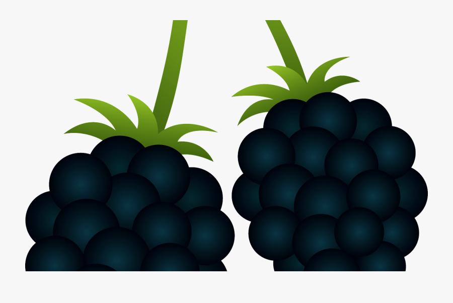 Transparent Berry Clipart - Blackberry Clipart, Transparent Clipart