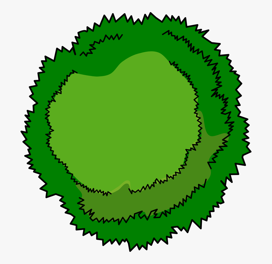 Bushes Clipart Tree Top - Tree Birds Eye View Clipart, Transparent Clipart