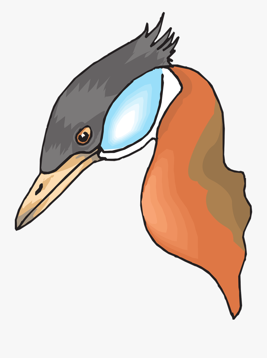 Head, Bird, Duck, Long, Beak, Necked, Feathers, Neck - Cabeça De Pato Png, Transparent Clipart