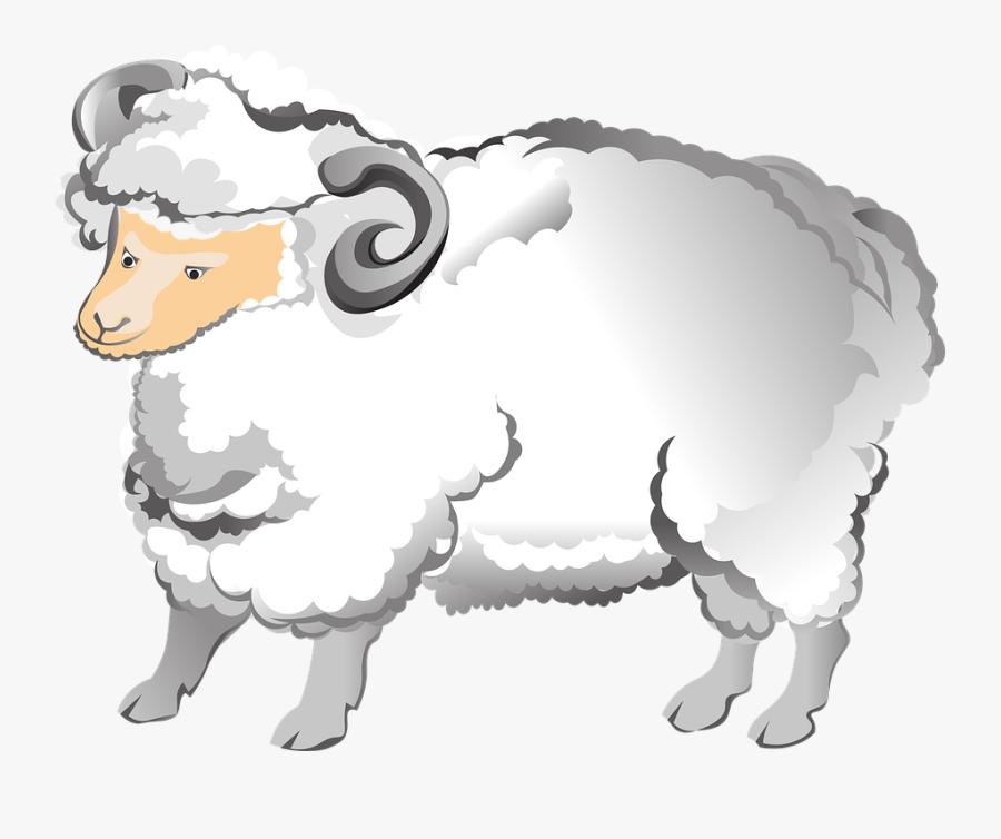 Ram, Sheep, Horns, Farm, Animal, Fluffy, Mammal, Male - Sheep, Transparent Clipart