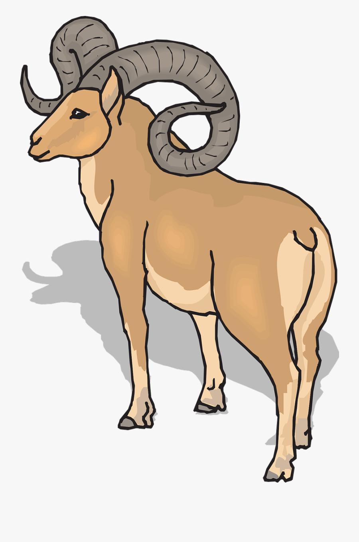 View Shadow Sheep - Ram Clipart, Transparent Clipart