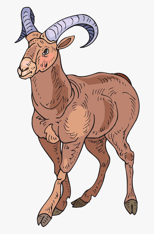Horn Clipart Sheep Horn - Desert Bighorn Sheep Clipart, Transparent Clipart