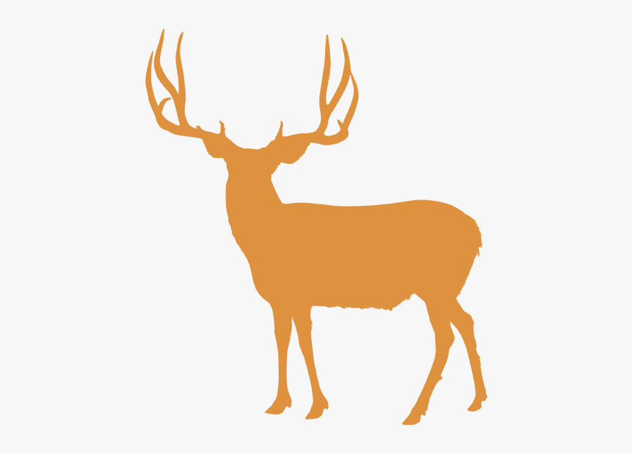 Hunts Antler Canyon Outfitters - Mule Deer Head Silhouette, Transparent Clipart