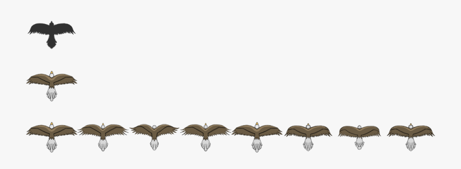 Transparent Barbed Wire Border Png - Top Down Bird Sprite Sheet, Transparent Clipart