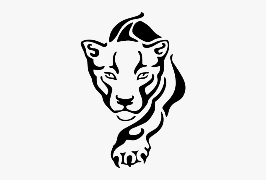 Tiger Face Png Transparent Images Black Panther Drawing Animal Free Transparent Clipart Clipartkey