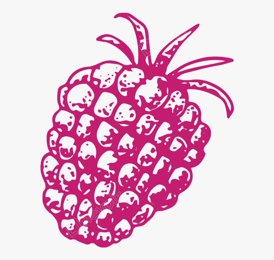 Drawn Pineapple Transparent - Illustration, Transparent Clipart