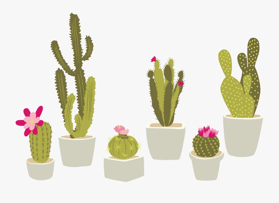 Clip Art Cactaceae Houseplant Succulent Plant - Transparent Background Cactus Clipart Png, Transparent Clipart