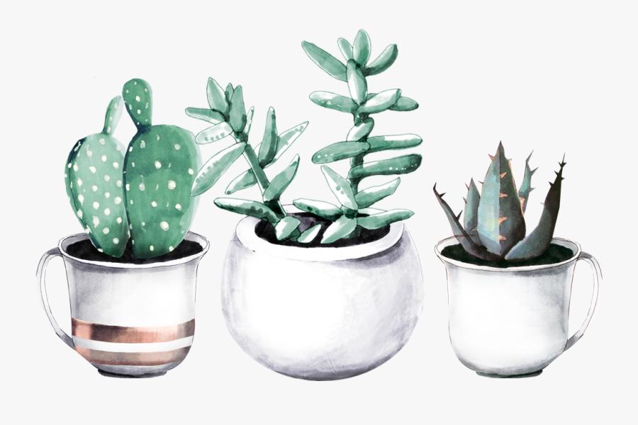 Cactuses In Pots - Watercolour Succulent Plants Paintings, Transparent Clipart