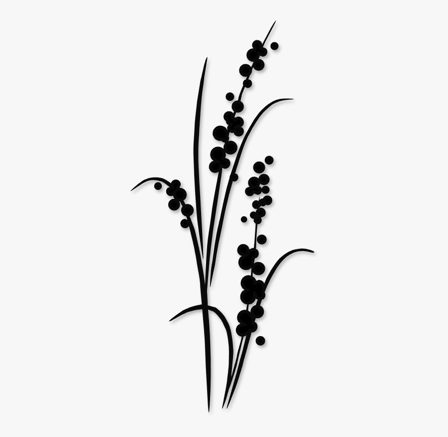Dandelion Clipart Silhouette - Tall Flowers Silhouette, Transparent Clipart