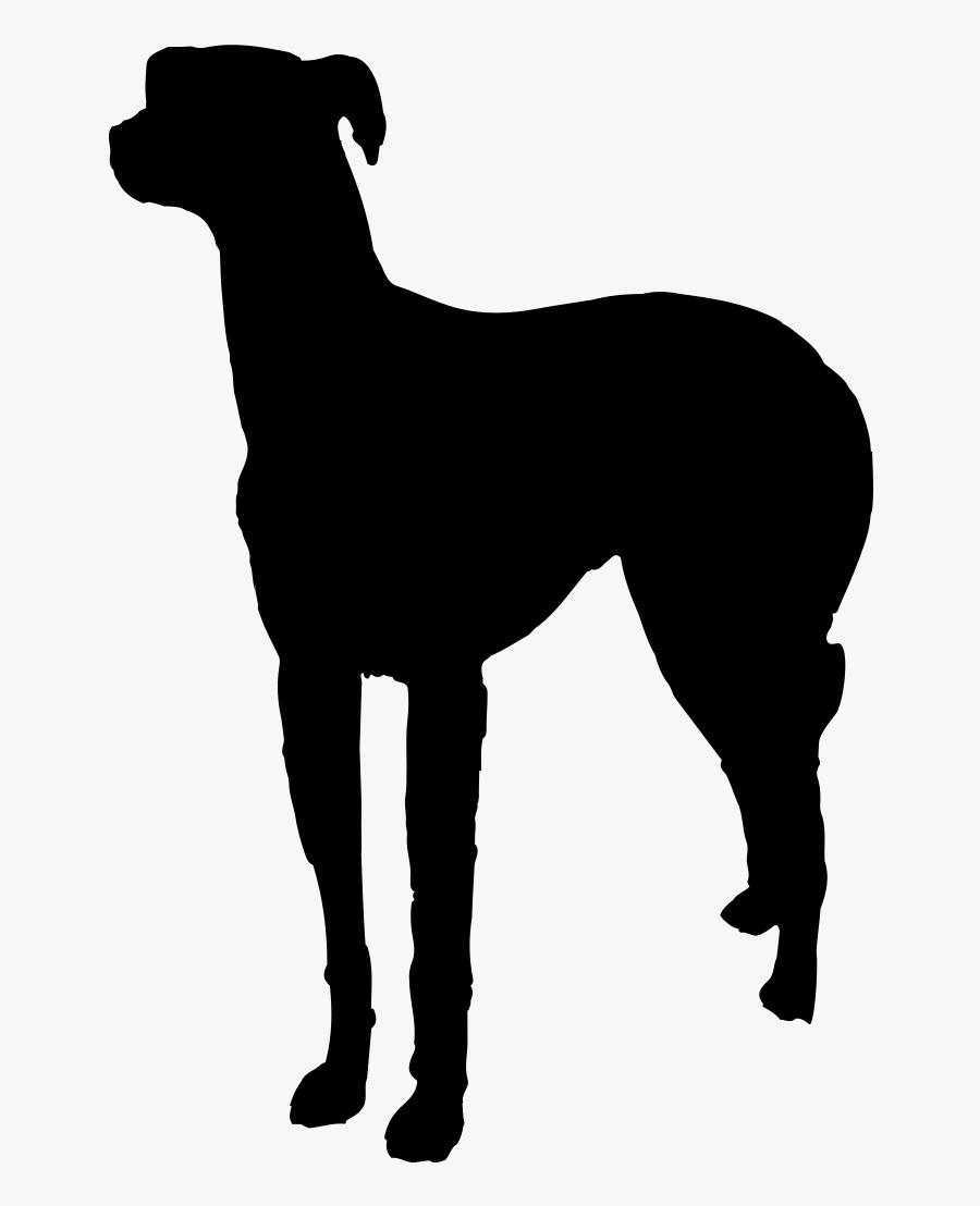 Italian Greyhound Pet Sitting Dog Walking Dog Breed - Rampur Greyhound, Transparent Clipart