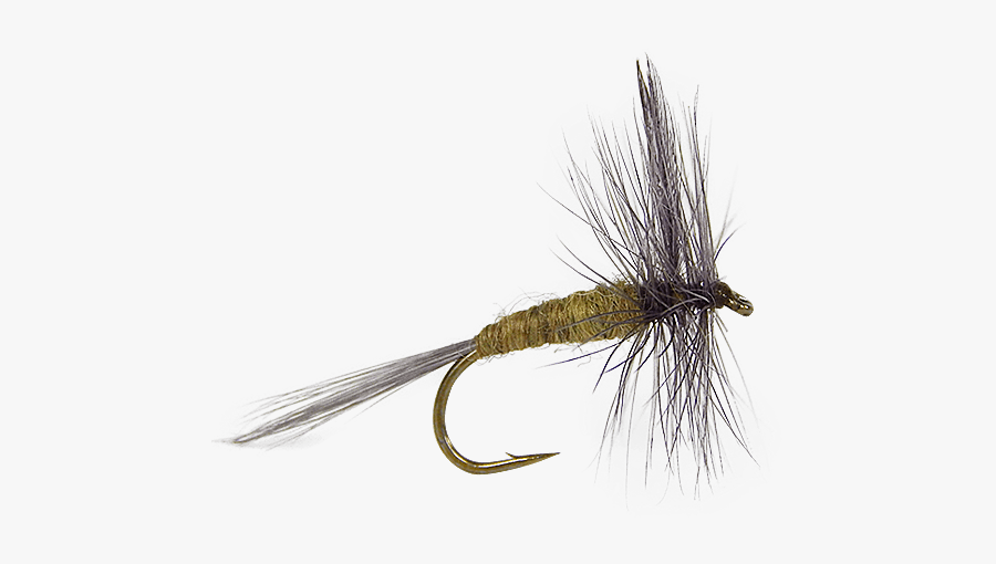 Artificial Fly Dry Fly Fishing Fly Tying - Insect, Transparent Clipart