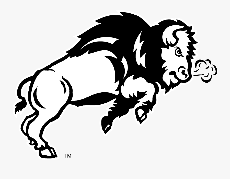 Ndsu Bison Logo Black And White - Mascot Of North Dakota State University, Transparent Clipart