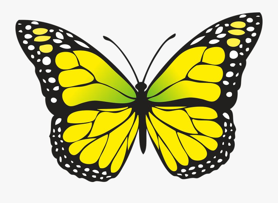 Transparent El Escritorio Clipart - Yellow Butterfly Clipart, Transparent Clipart