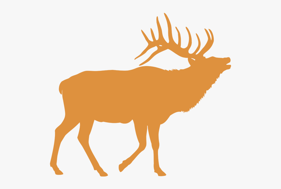 Elk Black And White, Transparent Clipart