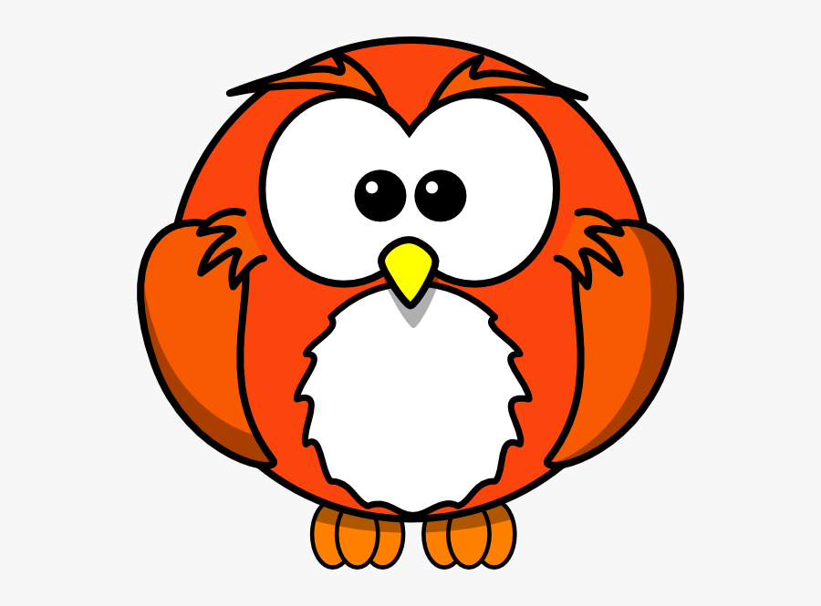 Animal Cards, Lesson Plans - The Mailbox   Diurnal animals, Nocturnal  animals kindergarten, Nocturnal animals