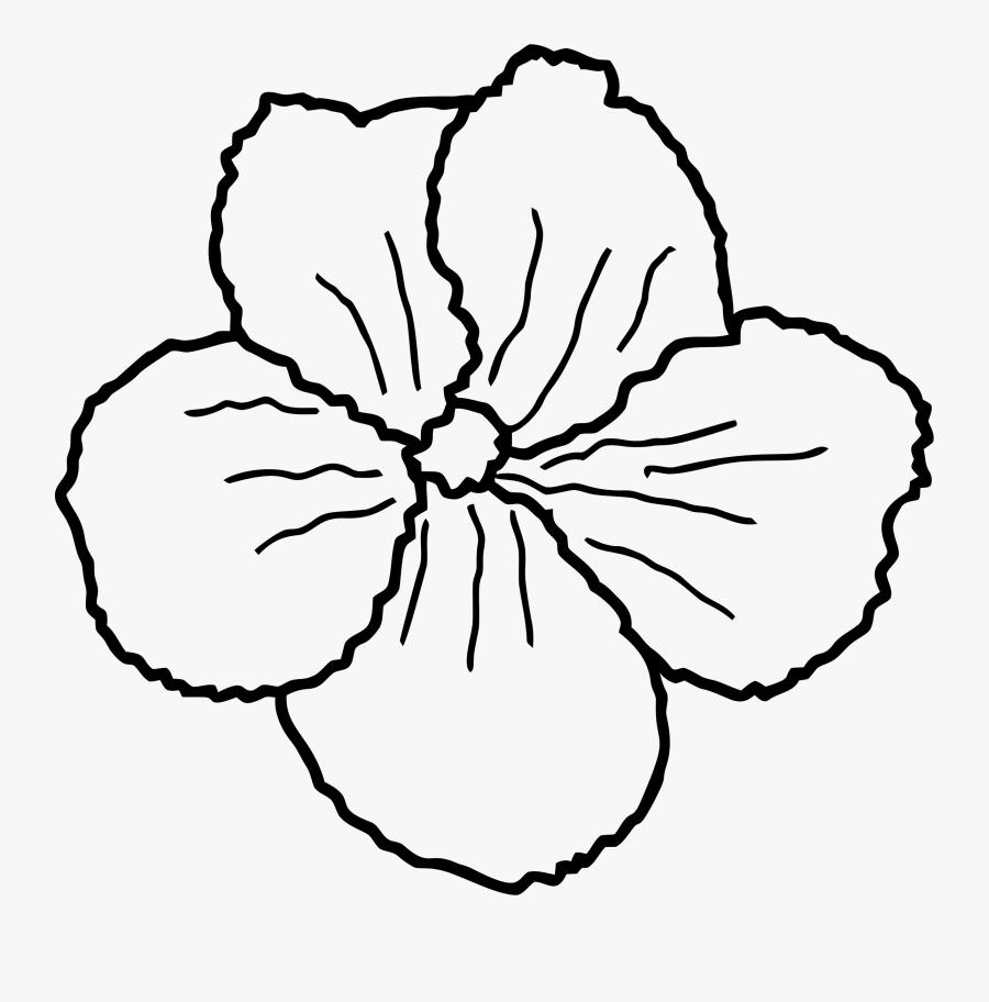Transparent Flower Sketch Png - Sketch, Transparent Clipart