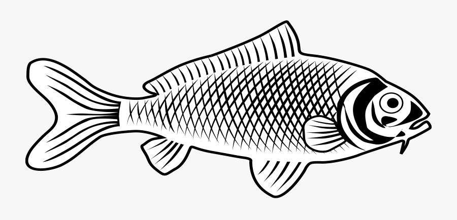 Fish Clip Free Stock - Fish Images Line Art, Transparent Clipart