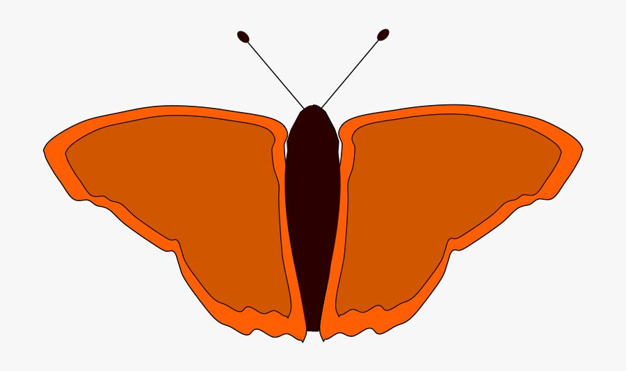 Orange Butterfly - فراشة برتقالية, Transparent Clipart