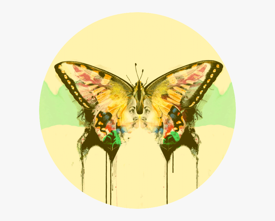 Drawing Spring Butterfly - Swallowtail Butterfly, Transparent Clipart