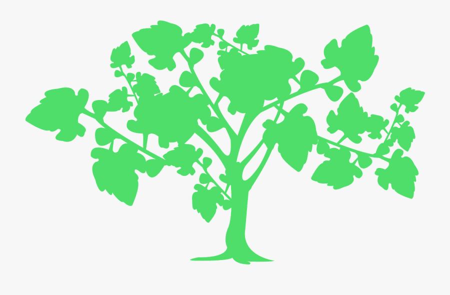Tree Jpg, Transparent Clipart