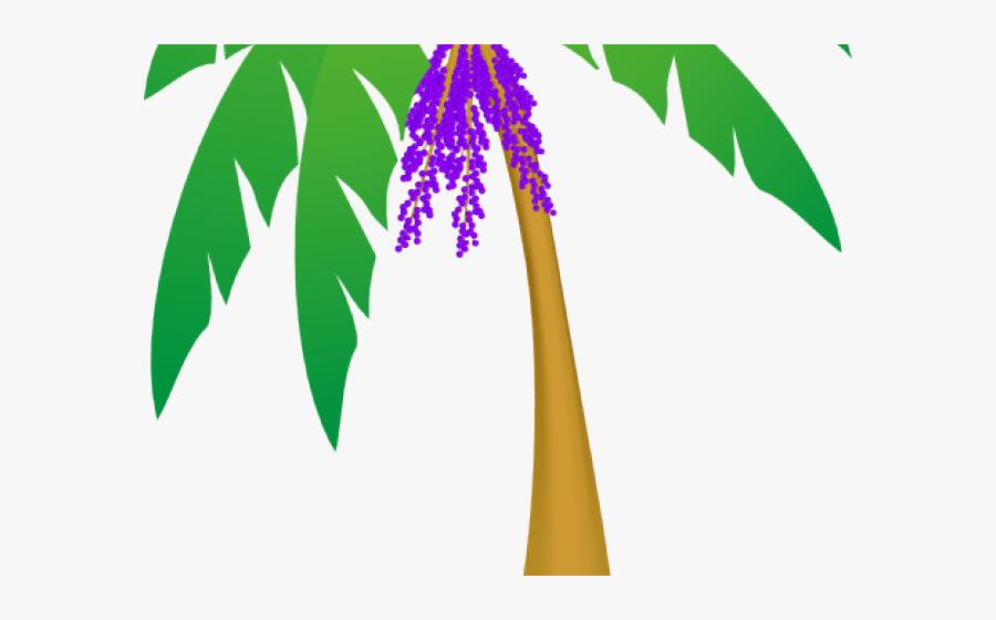 Leaf Clipart Hawaii - Clip Art Palm Tree Leaves, Transparent Clipart