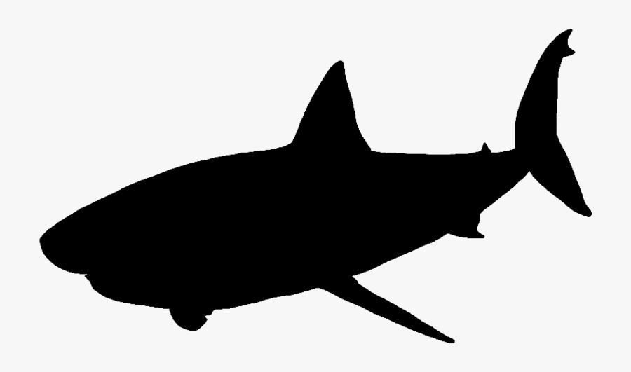 Great White Shark Vector Graphics Portable Network - Great White Shark Silhouette Png, Transparent Clipart