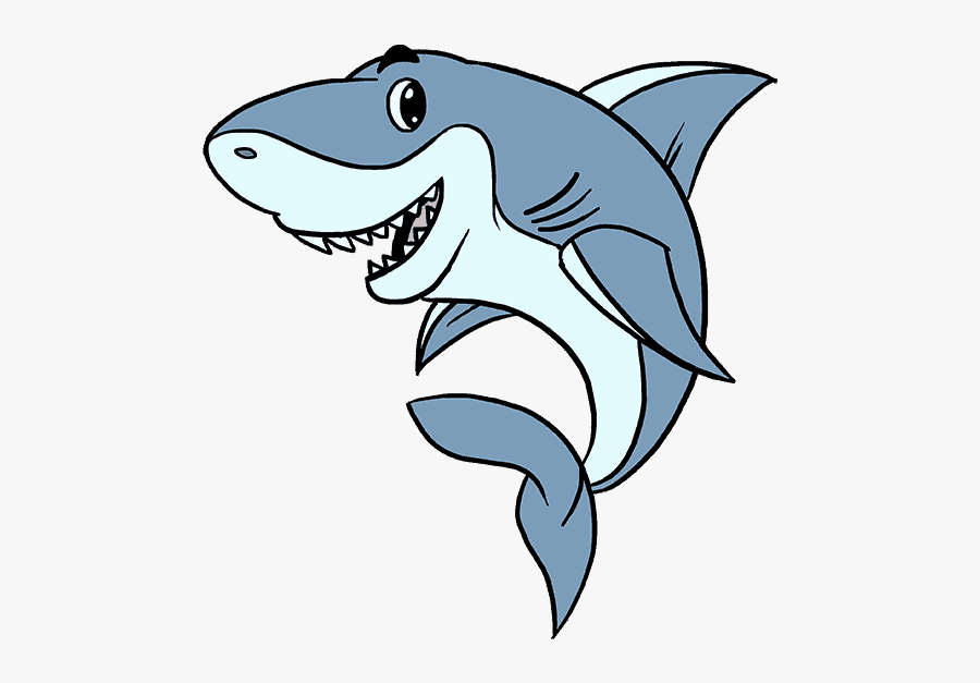 How To Draw A Cartoon Shark Easy Step - Drawing Sharks, Transparent Clipart