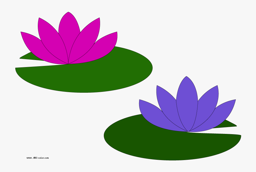 Picture Water Lilies - Cartoon Lily Pad Flower, Transparent Clipart