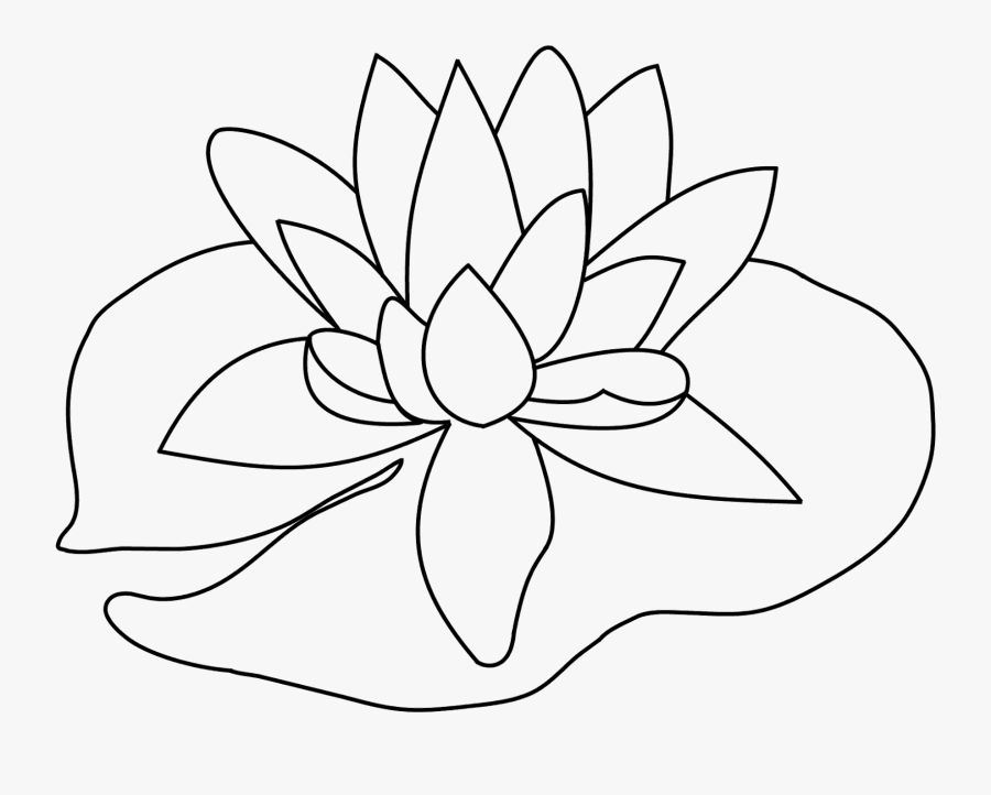 Thumb Image - Lily Pad Flower Drawing, Transparent Clipart