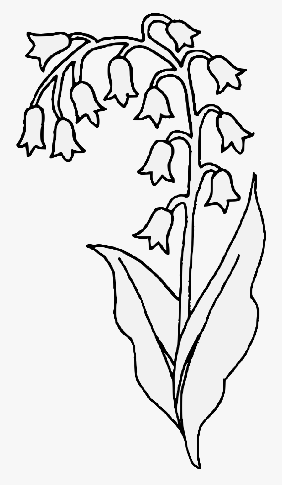 Lily Pad Flower Clipart Black And White - Black And White Lily Clipart Flowers, Transparent Clipart