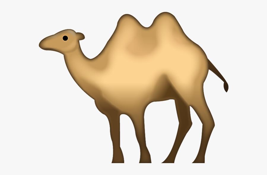 Camel Animal Transparent Png Images Free Download - Camel Iphone Emoji Png, Transparent Clipart