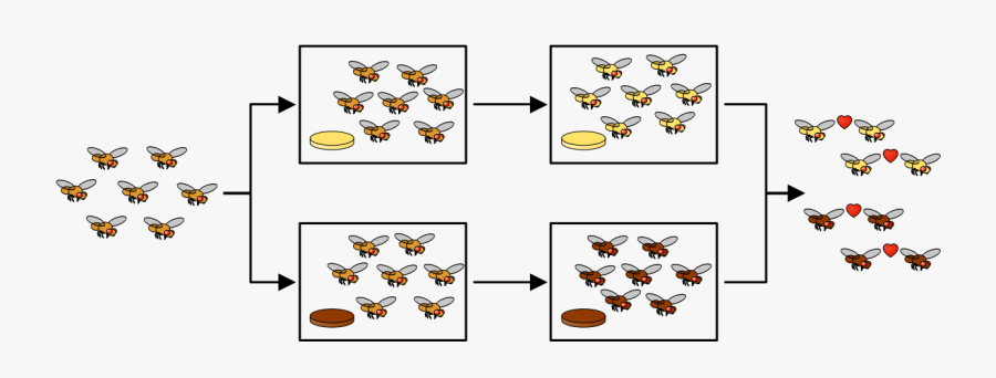 Reproductive Isolation, Transparent Clipart