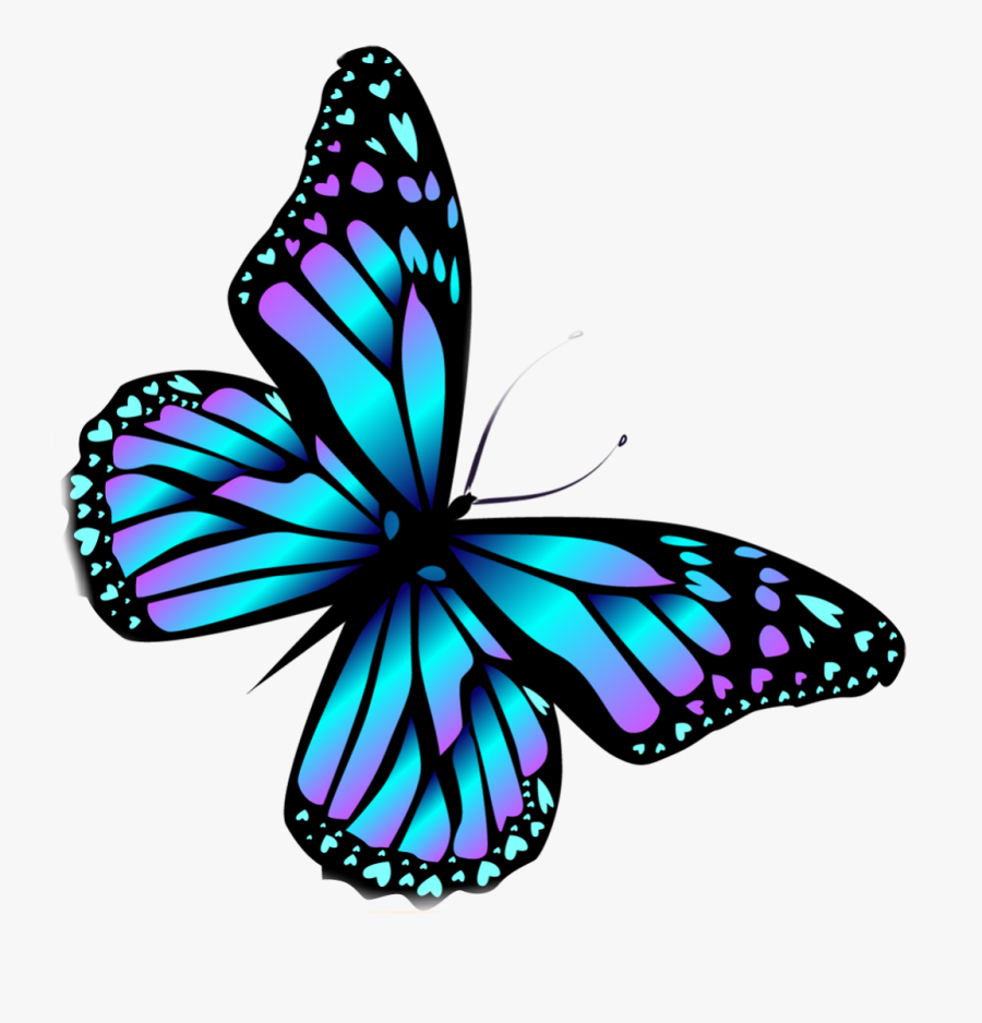 #butterfly #butterflies #wings #blue #colorful #colourful - Monarch Butterfly, Transparent Clipart