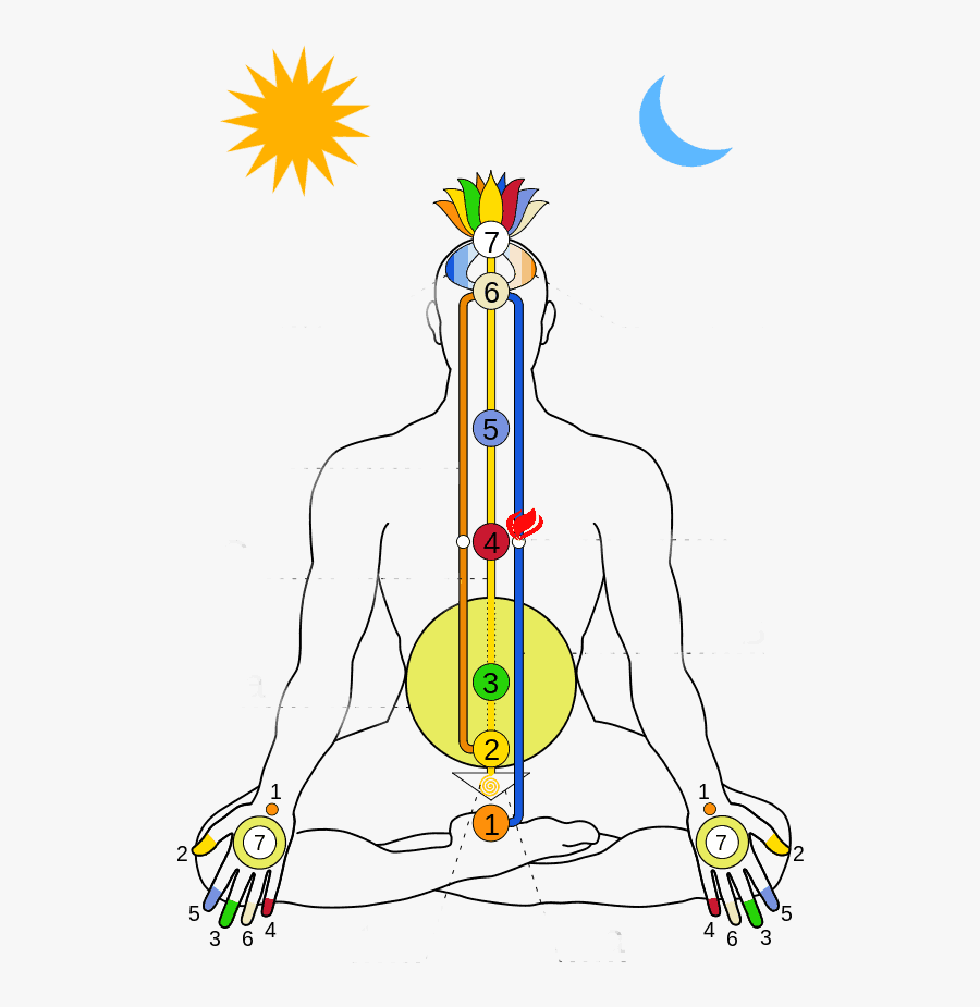 Energy Flow Map In Human Body, Transparent Clipart