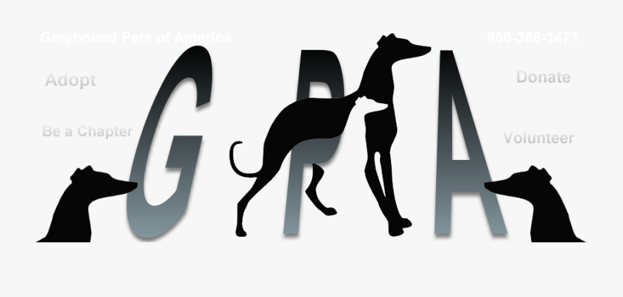 Threedogs - Greyhound Pets Of America, Transparent Clipart