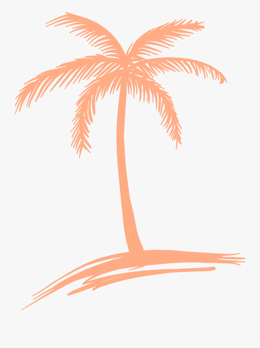 Drawing Detail Palm Tree, Transparent Clipart
